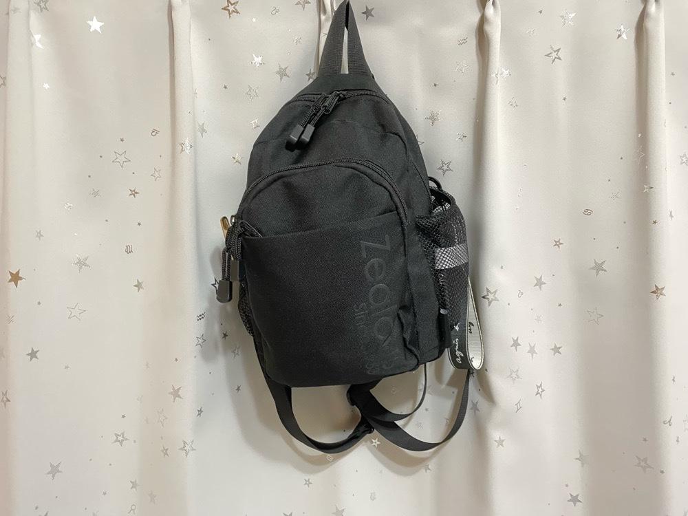2way-minibag